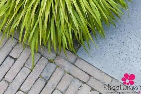 Contrast Tuinmaterialen Siergras