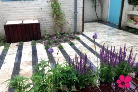 Tuinaanleg Renovatie Beplanting