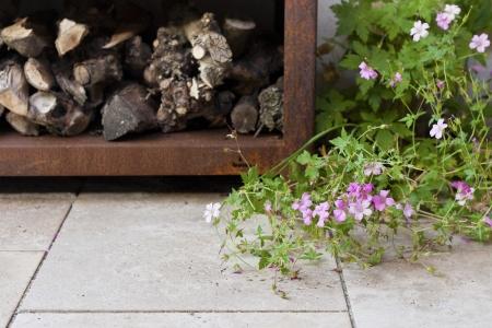 Tuinreportage Sfeertuinen door Caroline Piek Photography