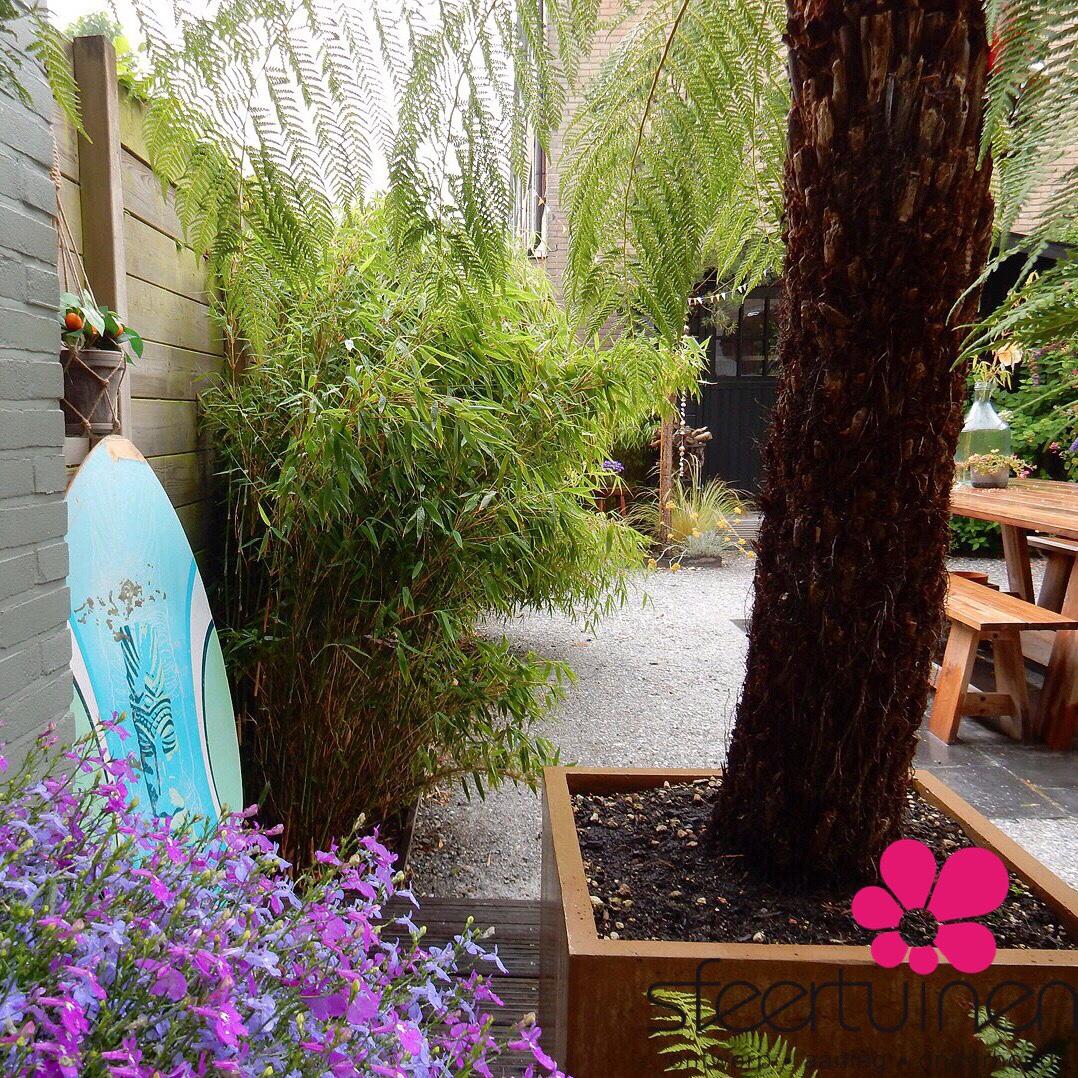 Een halfverharding (Schelpen) om een strandtuin te realiseren. Het regenwater zal bezinken in de bodem omdat de verharding goed doorlatend is.