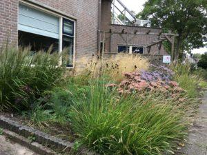 Met de juiste plantcombinaties zal de tuin mooi sluiten.
